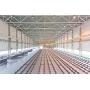 За год в Петербурге построено около 450 тыс. кв. м производственных площадей