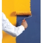 Покраска стен: ТОП-10 основных ошибок