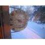 Как защитить квартиру от зимних холодов