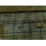 Оштукатуривание цоколя загородного дома по металлической сетке