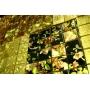 Компания «Интерьер Холл» предлагает фрески «Орто» со скидкой 10%!