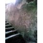 Подвалы могут быть сухими (гидроизоляция от компании MAPEI)