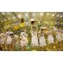 Волейбольная команда «Tytan» победитель «Challenge Cup 2012»