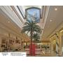 Фрески и фотообои ОРТО® стали достойным оформлением пространства Галереи Лувр в мегамолле «Армада» г. Оренбург!