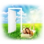Межкомнатные двери: экошпон