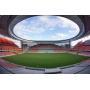 От освещения до подогрева поля – стадионы к Чемпионату Мира по футболу оборудованы по последнему слову техники