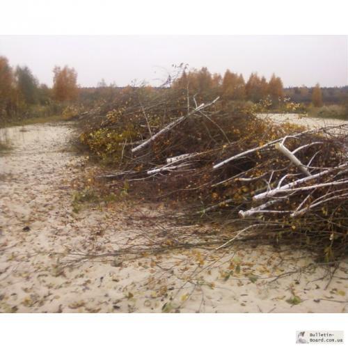 Расчистка участка от кустарников и мелколесья своими руками