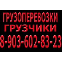 Бесплатный вывоз старой техники Нижний Новгород