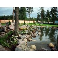 Строительство водоемов и ландшафтный дизайн