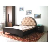1-комнатная квартира на Толстого 14 посуточно
