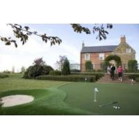 Строительство полей для гольфа и площадок для мини-гольфа