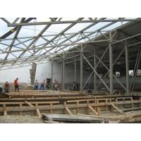 Строительство свинофермы