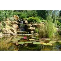 Устройство и изготовление водоемов, ручьев, каскадов, водопадов. любые Фонтаны и Бассейны. Цены Ваши!