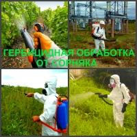 Гербицидная обработка Воронеж, от сорняков в Воронеже