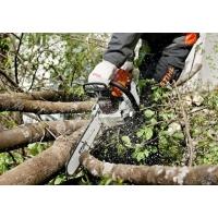 Удаление деревьев в Тюмени