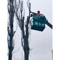 Обрезка и спил деревьев