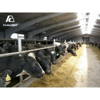 Коровники: строительство только со знаком качества