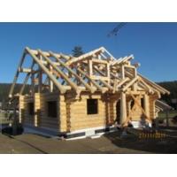 Экспертиза проектов и готовых деревянных домов