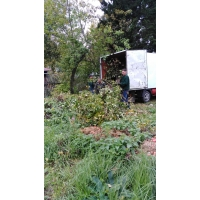 Вывоз строительного мусора, бытового хлама, демонтажные работы