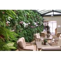 Озеленение, ландшафтный дизайн - ГринСити