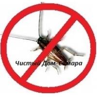 Обработка квартиры от тараканов, клопов, блох, грызунов. Морить насекомых