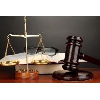 Досудебная/судебная экспертиза