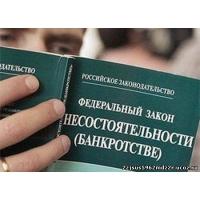 Избавление от долгов и кредиторов, через банкротство должника!