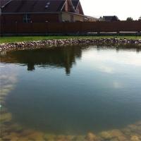 Строительство  прудов, водоемов