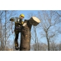 Вырубка деревьев и кустарников   Сыктывкар