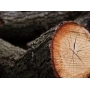 Валка деревьев спил деревьев колотые дрова   Казань