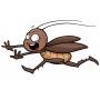 Уничтожение насекомых   Самара