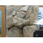 Искусственные скалы (водопады, ручьи) из бетона   Улан-Удэ