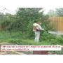 Уничтожение комаров. Обработка участка от комаров. Борьба с комарами   Самара