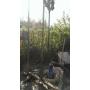 Бурение водозаборных скважин под ключ до 120 м   Москва