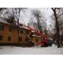 Снос (спил) аварийных деревьев   Новосибирск