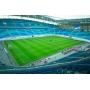 Строительство футбольных полей и спортивных площадок из искусственной травы   Москва