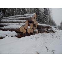 Вологодский качественный лес
