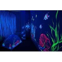 Флуоресцентная краска, краска светящаяся в ультрафиолете, неонов UltraNeon