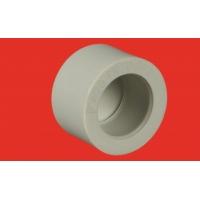 серый полипропилен (Чехия) FV-PLAST заглушка Д=20 (20/300)
