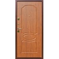 Дверь_металлическая_2