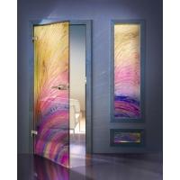 Дверь стеклянная Ренко