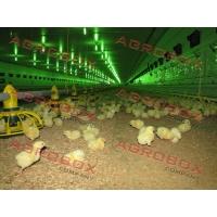 Ангары по хранению и переработки  сельскохозяйственной продукции
