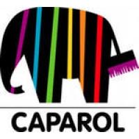 краски и сухие смеси Caparol