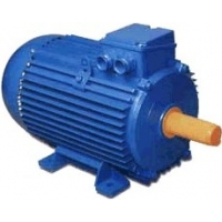 Электродвигатель 5АМ-280М4