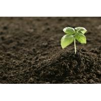 Грунт плодородный, растительный с доставкой