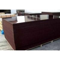 Ламинированная фанера (Тополь)Китай 2440х1220х18 мм