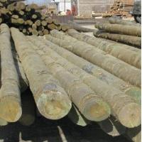 Столбы деревянные , пропитанные ЛЭП от 6 до11метр.  ( Ултан )