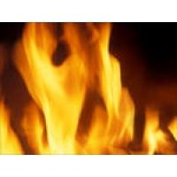 Огнебиозащита древесины  КСД