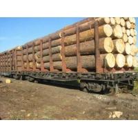 Кругляк Пиломатериалы Timberk lumber