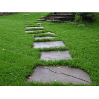 Ландшафтный дизайн-озеленение  газон посевной